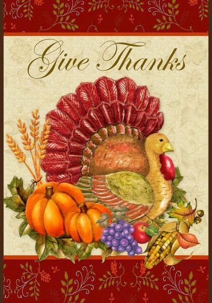 Toland 'Thankful Turkey' Thanksgiving Flag