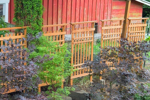 A Trellis Can Be Great Addition To Your Garden They Are Used Give Support Climbing Plants Vegetables And Flowers Very Attractive