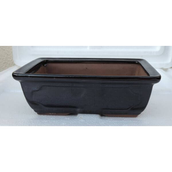 Black Ceramic Bonsai Pot, 6 x 4.5 x 2 Inches