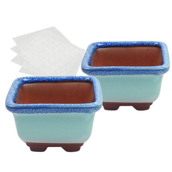 Happy Bonsai Small Glazed Bonsai Pots