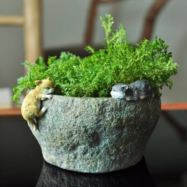 Kittens Playing on Stone Flower Pot