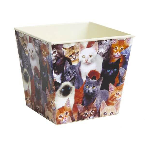 Priscilla's Exclusive Real Cats Planter Pot