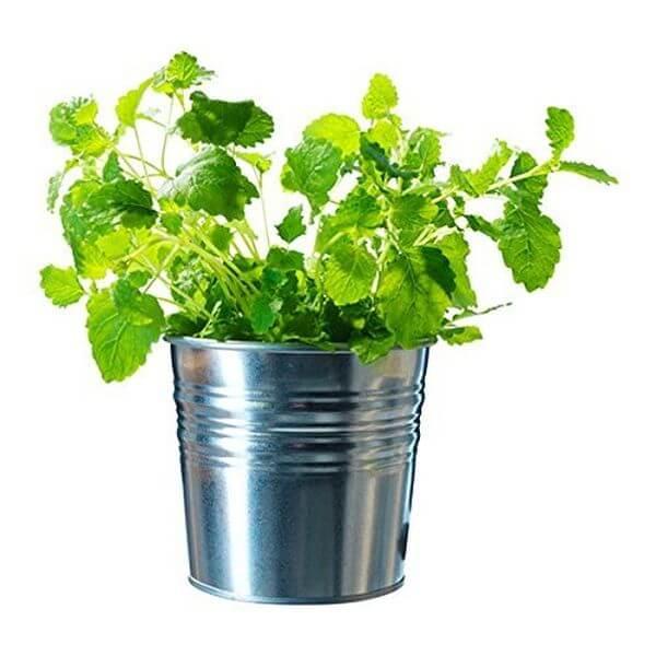 Ikea Galvanized Plant Pots, Silver