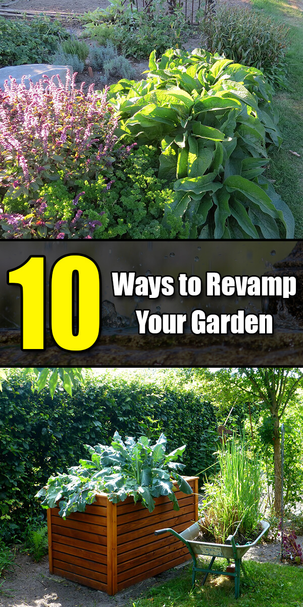 10 Ways to Revamp Your Garden - Golly Gee Gardening