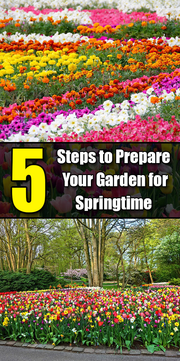 5 Steps to Prepare Your Garden for Springtime - Golly Gee Gardening