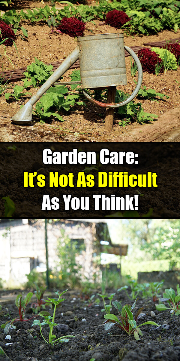 Garden Care It Is Not As Difficult As You Think! - Golly Gee Gardening