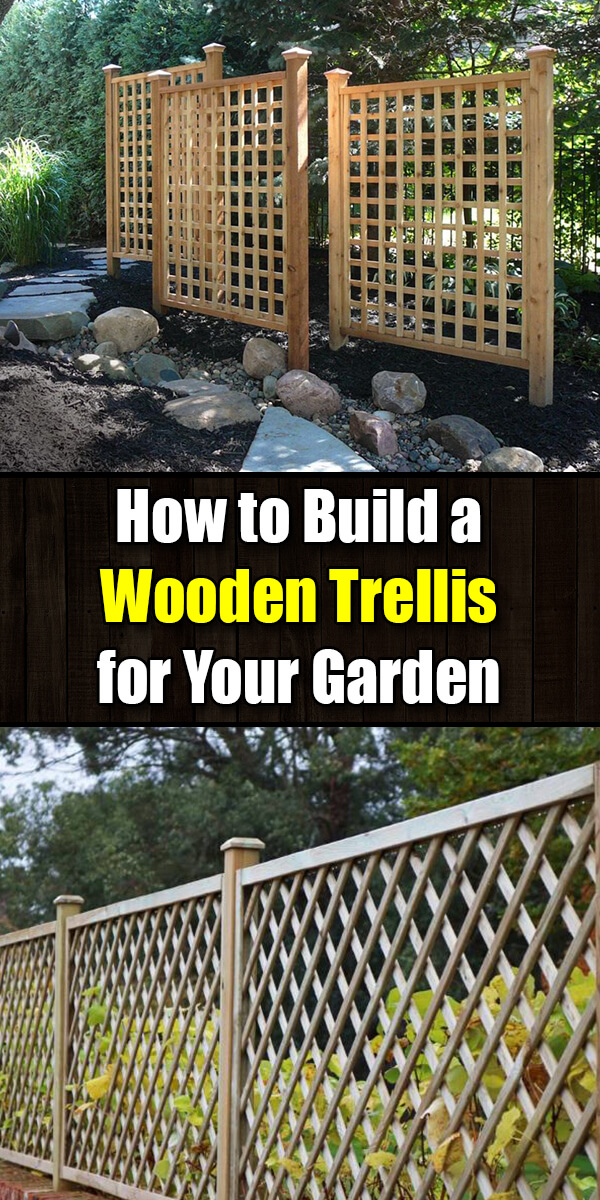 How to Build a Wooden Trellis for Your Garden - Golly Gee Gardening