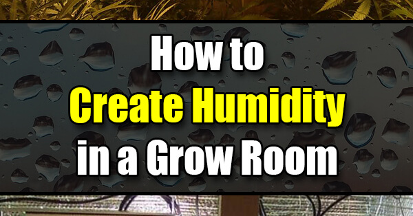 How To Create Humidity In A Grow Room Or Grow Tent Golly
