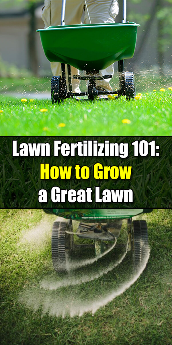 Lawn Fertilizing 101 How to Grow a Great Lawn - Golly Gee Gardening