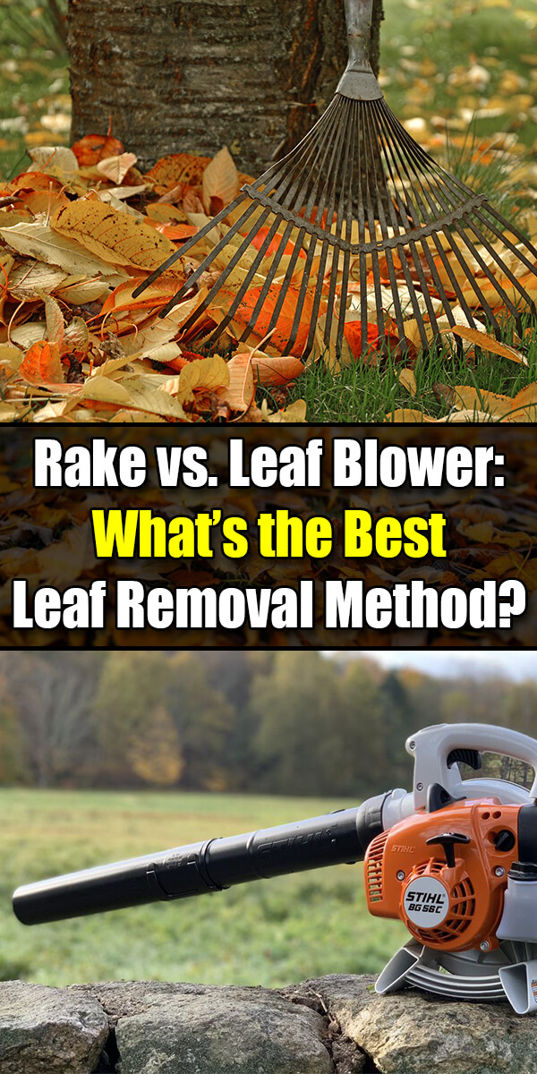 Rake vs Leaf Blower – What's the Best Leaf Removal Method? - Golly Gee Gardening