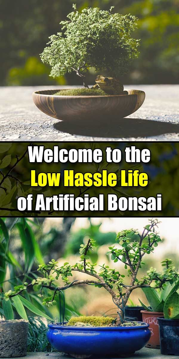 Welcome to the Low Hassle Life of Artificial Bonsai - Golly Gee Gardening