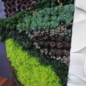 60 Wall Garden Ideas and Inspiration - Golly Gee Gardening #wallgardens #verticalgardens #verticalgardening